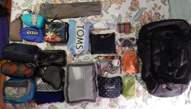 Everything all nestled into their packing cubes, ready to go in the backpack!